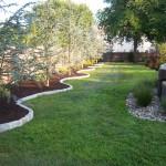 Tree Planting 101