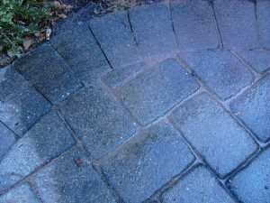 Polymer Fortified Paver Sand Wet