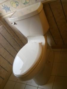 Final Toilet Installation
