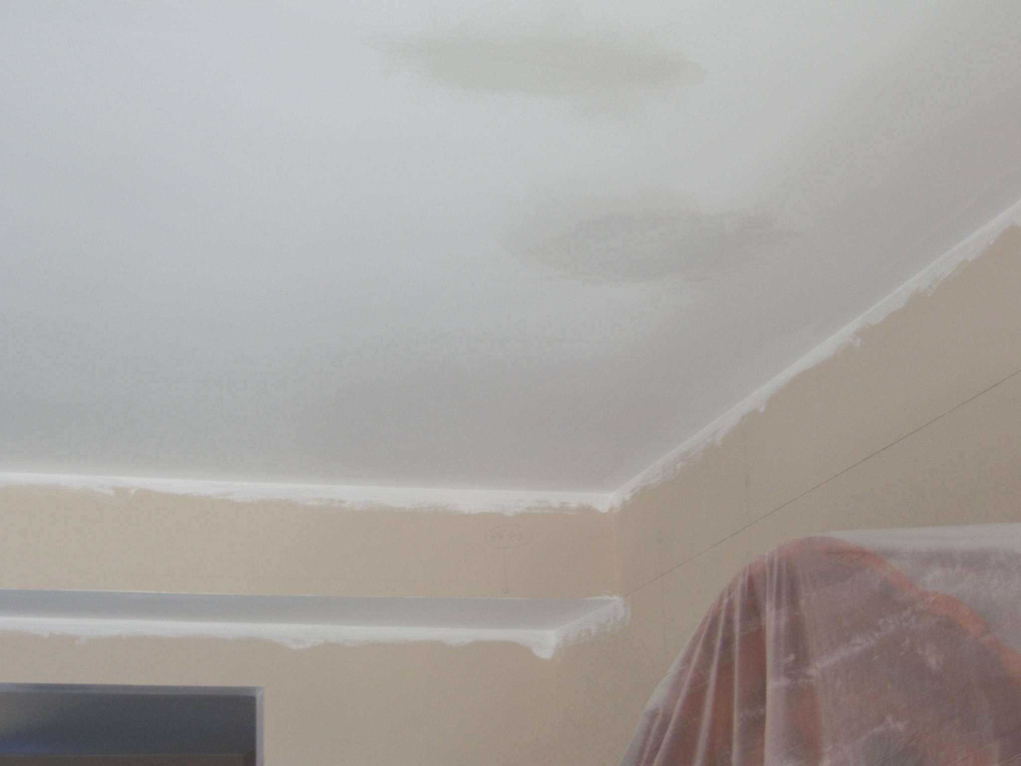 Ceiling Paint With Primer Spider Cracks In New