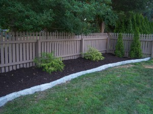 Backyard Mulch with Golden Thread Cypress and Belgian Block