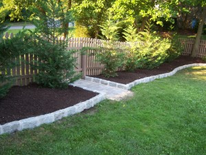 Backyard Mulch with Leyland Cypress and Belgian Block