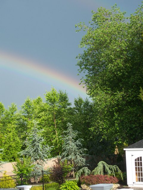 Summer Rainbow over the Pool Landscaping