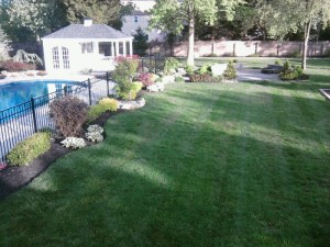 Backyard Grading Surface Water Runoff Resolved