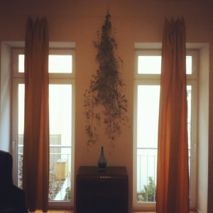 Custom Curtains with Vine Accents