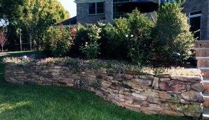 Landscape Bed Curb Appeal