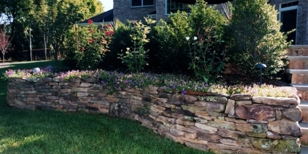 5 Easy Ways to Bring Your Landscape Back to Life