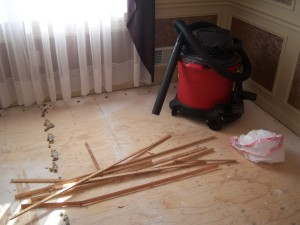 Shop Vacuum for Subfloor Clean-Up