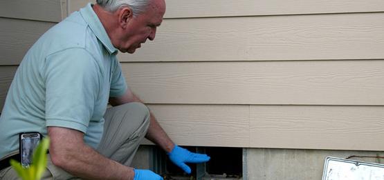 Eden Pest Inspection