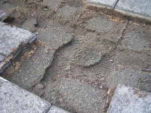 Missing Paver Walkway Stone Dust and Soil