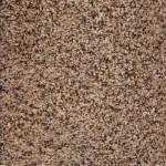 Carpet Tile Texture and Color