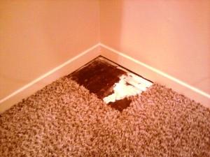 Carpet Tiles to the Final Room Corner