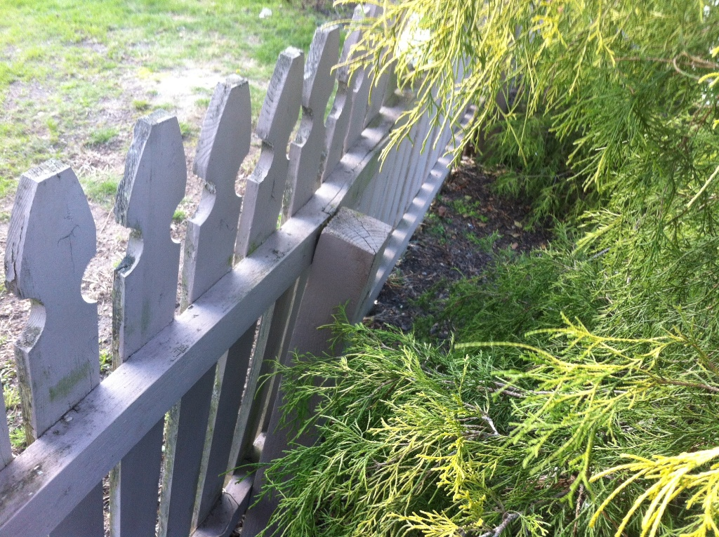Building a Removable Wood Fence Section and Gate - All About