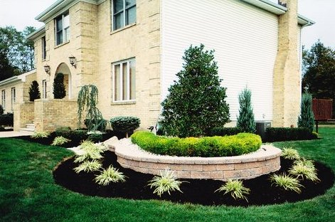 Black Dyed Mulch In Landscape Bed