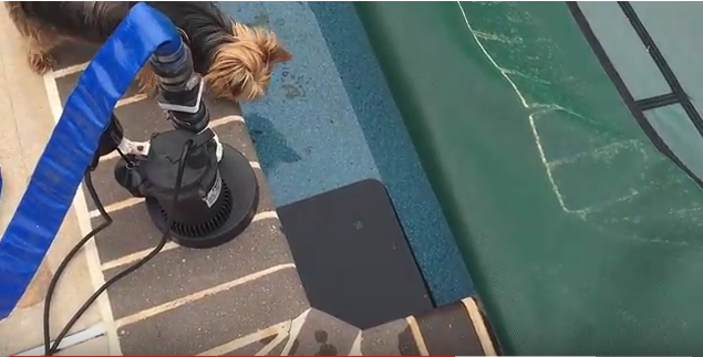 How To Use A Submersible Pump To Remove Excess Pool Water All About The House